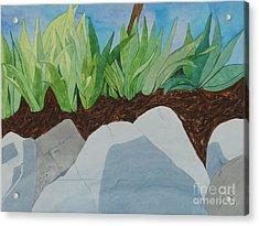 Chromitic Iris Acrylic Print by Jennifer Taylor Rogerson