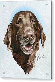 Chubbs Acrylic Print by Marshall Robinson
