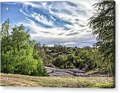 Cirrus Clouds With Trees Acrylic Print