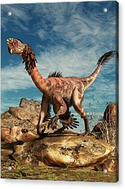 Citipati In The Desert Acrylic Print by Daniel Eskridge