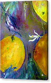 Citrus 3 Acrylic Print by Beverly  Koski