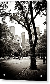 Acrylic Print featuring the photograph City Contrast by Sara Frank