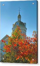 City Hall Dome And Tree  Acrylic Print