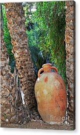 Clay Jar By Palm Tree Acrylic Print by Sami Sarkis