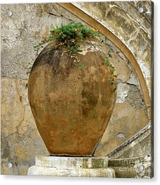 Acrylic Print featuring the photograph Clay Pot by Lainie Wrightson