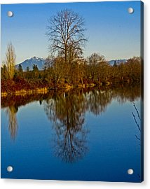 Clear And Cold Acrylic Print by Seth Shotwell