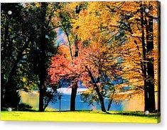 Clear Creek Autumn Acrylic Print by Darlene Bell