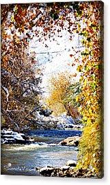 Clear Creek Golden Acrylic Print by Rhonda DePalma