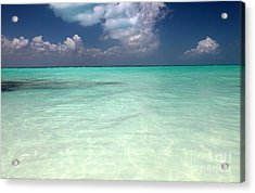 Acrylic Print featuring the photograph Clear by Milena Boeva