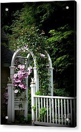 Clematis Arch Acrylic Print by Tanya  Searcy