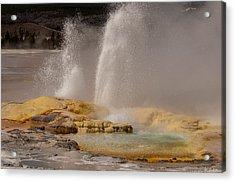 Clepsydra Geyser Yellowstone National Park Acrylic Print by Bruce Gourley