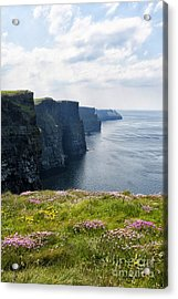 Cliffs Of Moher In Spring Acrylic Print