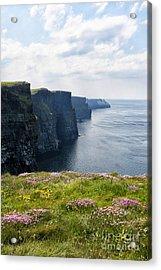 Cliffs Of Moher In Spring Acrylic Print by Cheryl Davis