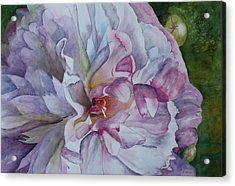 Acrylic Print featuring the painting Close Focus Peony by Patsy Sharpe