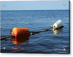 Acrylic Print featuring the photograph Closed by Barbara McMahon