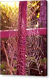 Acrylic Print featuring the photograph Closer To Him Cross Weaving by Cindy Wright