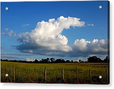 Cloud Acrylic Print by Beverly Hammond