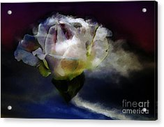 Acrylic Print featuring the photograph Cloud Rose Painterly by Clayton Bruster