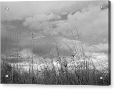 Acrylic Print featuring the photograph Cloud Watching by Kathleen Grace