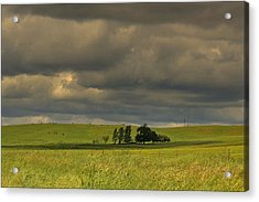 Acrylic Print featuring the photograph Clouds by Rima Biswas
