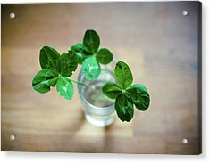 Clovers Leaves In Glass Acrylic Print