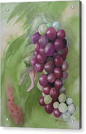 Cluster Of Grapes Acrylic Print by JoAnne Hessong