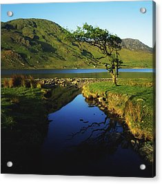 Co Galway, Kylemore Lough, Benbaun Acrylic Print by The Irish Image Collection