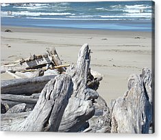 Coastal Driftwood Art Prints Blue Waves Ocean Acrylic Print by Baslee Troutman