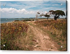 Acrylic Print featuring the photograph Coastal Path by Shirley Mitchell