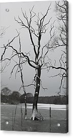 Coate2 Acrylic Print by Michael Standen Smith