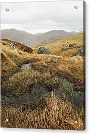 Cobbler Acrylic Print by Michael Standen Smith