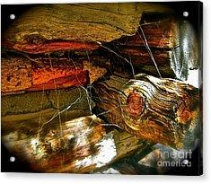 Cobwebs Acrylic Print by Tina Slee