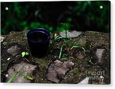 Coffee On The Rock  Acrylic Print