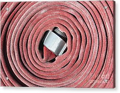 Coiled Fire Hose Acrylic Print by Skip Nall