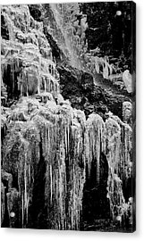Cold As Ice Acrylic Print