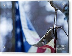 Cold Glory Acrylic Print by Sue OConnor