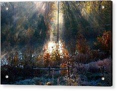Cold Mist Iv Acrylic Print by Michael Tipton