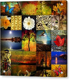Collage Of Colors Acrylic Print by Mark Ashkenazi