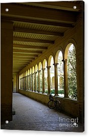 Colonnade Acrylic Print by Tanya  Searcy