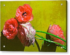 Color 83 Acrylic Print by Pamela Cooper