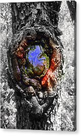 Acrylic Print featuring the photograph Color Genesis by Christine Ricker Brandt