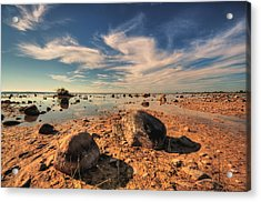 Acrylic Print featuring the photograph Color Rockscape by Coby Cooper