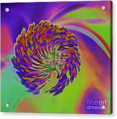 Acrylic Print featuring the photograph Color Splash by Cindy Manero