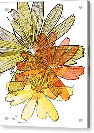 Color Splash Acrylic Print