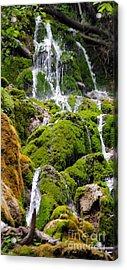 Acrylic Print featuring the photograph Colorado 6 by Deniece Platt
