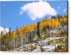Colorado Autumn Acrylic Print by Sharon I Williams