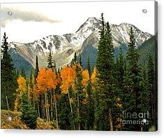 Colorado Colors Acrylic Print by Marilyn Smith