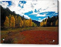 Colorado Mountain Autumn View Acrylic Print by Stephen  Johnson