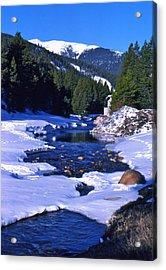 Colorado Mountain Stream Acrylic Print