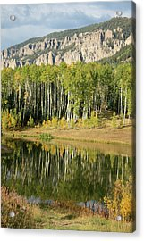 Acrylic Print featuring the photograph Colorado Reflections by Drusilla Montemayor